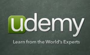 cro udemy 0415